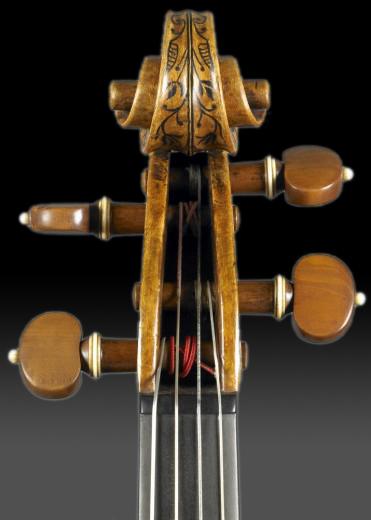 voluta Stradivarius Hellier