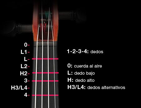 marcas mástil violín