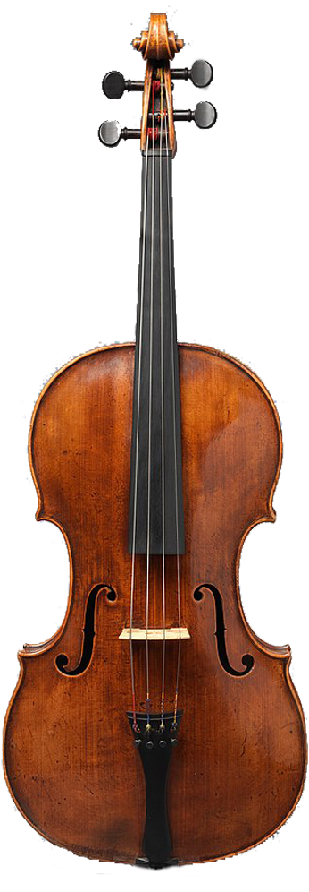 Viola de Stainer