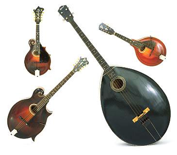 Familia de mandolinas Gibson