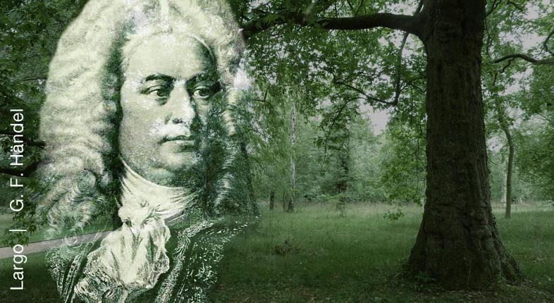 Largo  (Ombra mai fu)  |  G. F. Händel