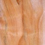 madera de sauce